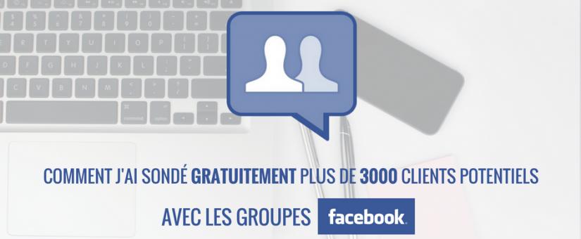 Comment j'ai sondé gratuitement plus de 3000 clients potentiels avec les groupes Facebook